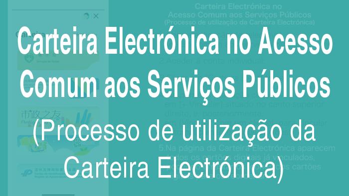 Carteira Electrónica no Acesso Comum aos Serviços Públicos (Processo de utilização da Carteira Electrónica)